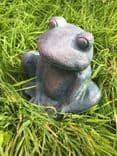 Garden Frog Latex Mould
